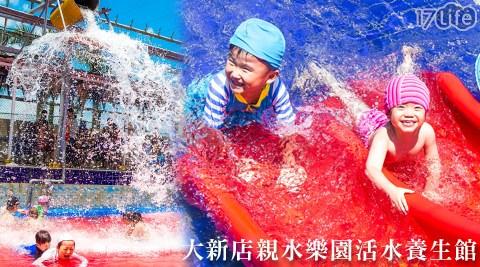 大新店/親水/樂園/活水/養生館/游泳池/戲水/溫泉魚/冷泉/健身