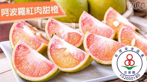 蜜柑/秋/佛利蒙/水果/吉園圃/認證/阿波羅/紅肉/甜橙/柳丁/蜜