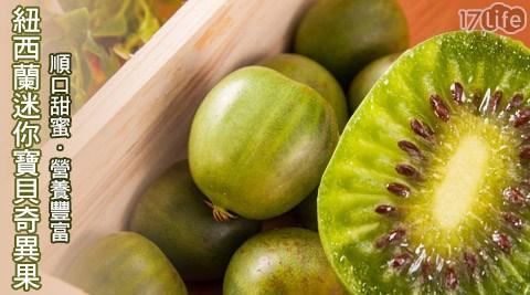 平均最低只要98元起(含運)即可享有紐西蘭kiwiberry一口神奇寶貝奇異果(125g/盒):3盒/5盒/8盒/12盒/24盒。