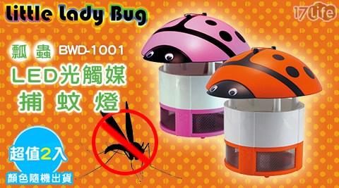 Little Lady Bug/瓢蟲/LED/光觸媒/捕蚊燈/BWD-1001/防蚊