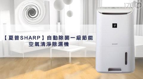 夏普SHARP/自動除菌/一級節能/空氣清淨除濕機 /6.5公升(DW-F65HT-W) / 8公升 (DW-D8HT-W) / 10公升 (DW-E10FT-W) / 13公升(DW-E13HT-W)/除濕機/除溼機/一級節能/一級能效