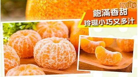 蜜柑/秋/佛利蒙/佛利盟/水果/橘子/橙/橘/台灣/甜/必吃/美食/當季/新鮮
