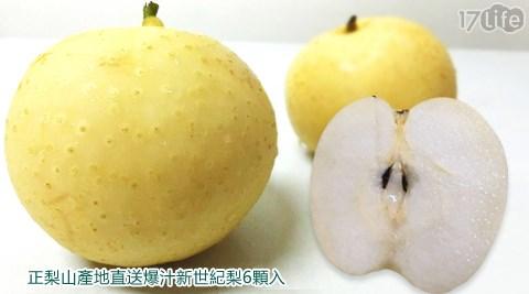 梨山/新世紀/秋/世紀梨/水梨/爆汁/台中/潤肺/潤喉/養生