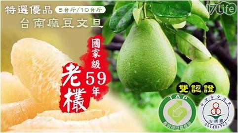 【雙認證】國家級59年老欉特選優品台南麻豆文旦(5台斤,5~8顆)