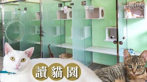讀貓園/住宿/貓咪/愛貓/貓奴/喵咪