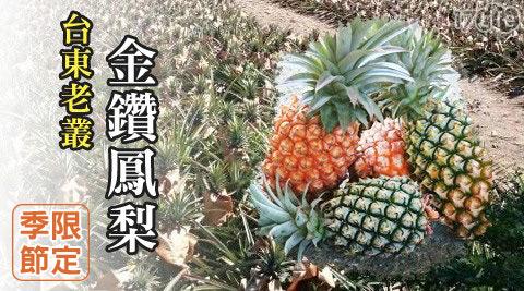 季節限定!中央山脈泉水灌溉沒有生長激素-台東老欉金鑽鳳梨