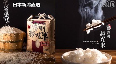 豐國/日本/新潟/越光米/米/白米/糙米