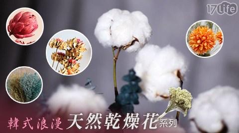 韓式/浪漫/天然乾燥花/天然/乾燥花/花/裝飾