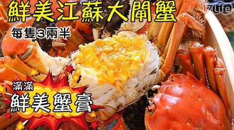 平均每隻最低只要119元起(含運)即可購得正宗江蘇老饕極鮮甜優質3兩5大閘蟹6隻/12隻/18隻/24隻/30隻/40隻。