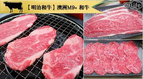 明治和牛/明治/和牛/澳洲M9+和牛/松坂/五花/霜降/火鍋/肉片