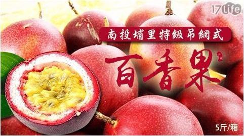 南投埔里特級吊網式香甜百香果(5斤/約30-40顆/箱)