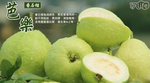 高雄/牛奶/套網/燕巢/珍珠/芭樂/水果/消化/輕食/野餐/沙拉/維他命/台灣