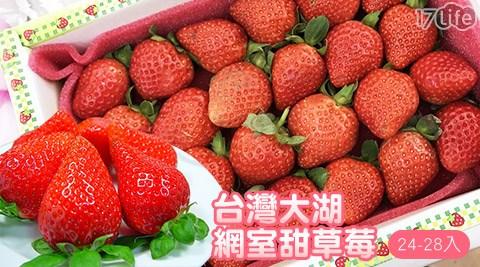 草莓季/台灣/大湖/苗栗/網室/甜草莓/草莓/平價/美食/優惠/鄒頌/水果/伴手禮/送禮/少女/夢幻/甜食