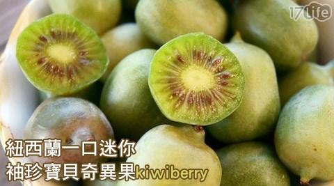 紐西蘭/一口/迷你/袖珍/寶貝/奇異果/kiwi/berry/水果/季節/當季/新鮮/消化/女性/養身/養生/酵素/維他命/C/baby