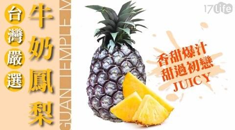 沙拉/水果/嘉義/在地/台灣/民雄/牛奶/鳳梨/野餐/餐後/消化/腸胃/季節限定/國產
