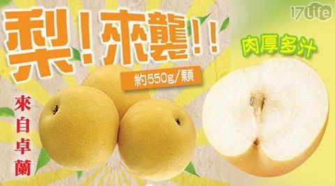 艾果/苗栗/卓蘭/爆漿/爆汁/特大/16A/大顆/牛奶新興梨/水梨/卓蘭梨/水果
