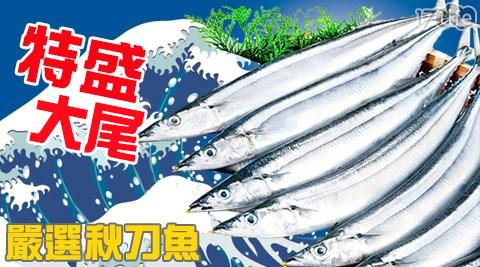 特盛/嚴選/大尾秋刀魚/大尾/秋刀魚/魚/海鮮/冷凍