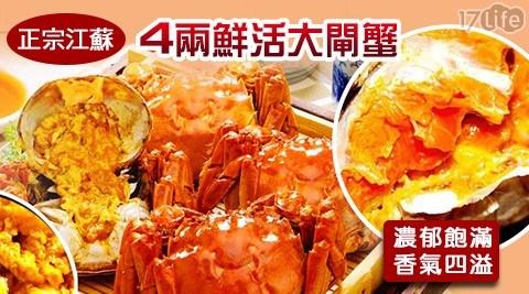 江蘇/4兩/鮮活/大閘蟹/秋蟹/螃蟹