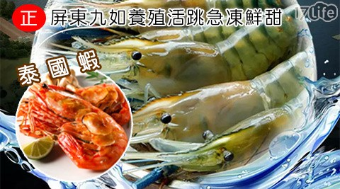 屏東/九如/養殖/活跳/急凍/鮮甜/泰國/蝦