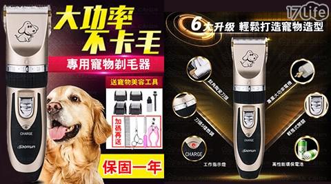平均最低只要499元起(含運)即可享有寵物美容剃毛器 (加碼送美容工具組)平均最低只要499元起(含運)即可享有寵物美容剃毛器 (加碼送美容工具組):1台/2台。