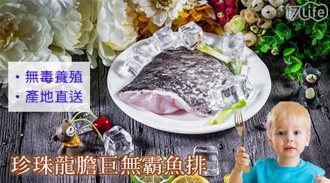 珍珠/龍膽/巨無霸/魚排