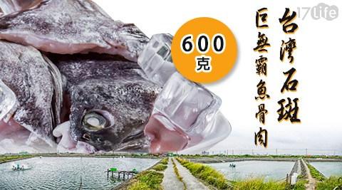 台灣/石斑/巨無霸/魚骨肉/海鮮/魚/煮湯/湯