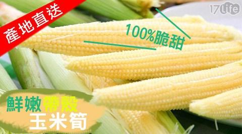 楊家農場/鮮嫩帶殼100%脆甜玉米筍/玉米筍