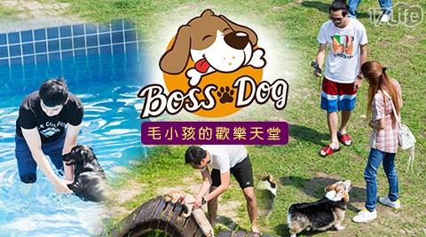 Boss Dog逗狗樂園