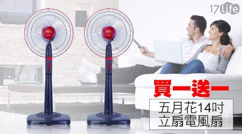 【五月花】台灣製造三段風速調整電風扇(14吋)買一送一