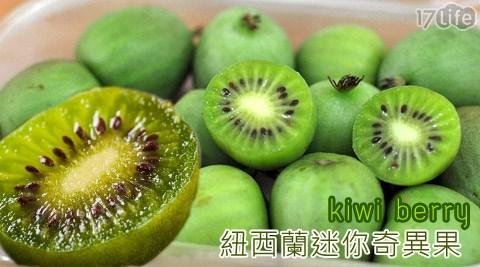 紐西蘭/迷你/奇異果/kiwi berry/奇異果莓/水果/點心/迷你奇異果