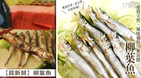 買新鮮/柳葉魚