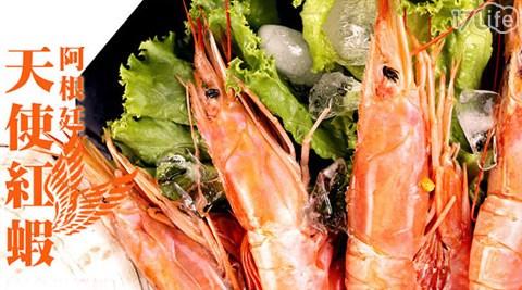 買新鮮-阿根廷天使紅蝦