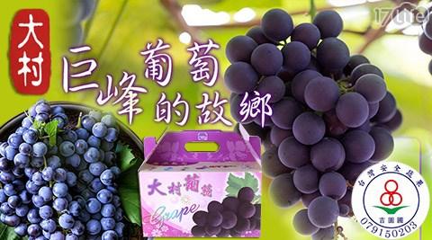 買新鮮-吉園圃認證大村嚴選巨峰葡萄