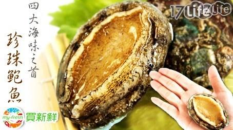買新鮮-大海的鮮味-珍珠鮑魚
