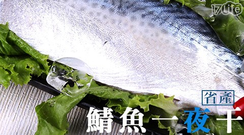 平均每片最低只要29元起即可購得【買新鮮】省產鯖魚一夜干1片/20片/30片/40片(130g±10%/片),購滿10片即享免運優惠!
