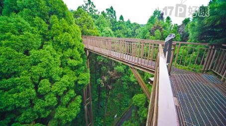 森林生态酒店分享展示