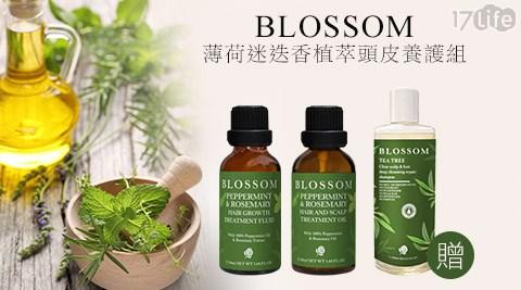 BLOSSOM/薄荷迷迭香/植萃/頭皮養護/茶樹洗髮精