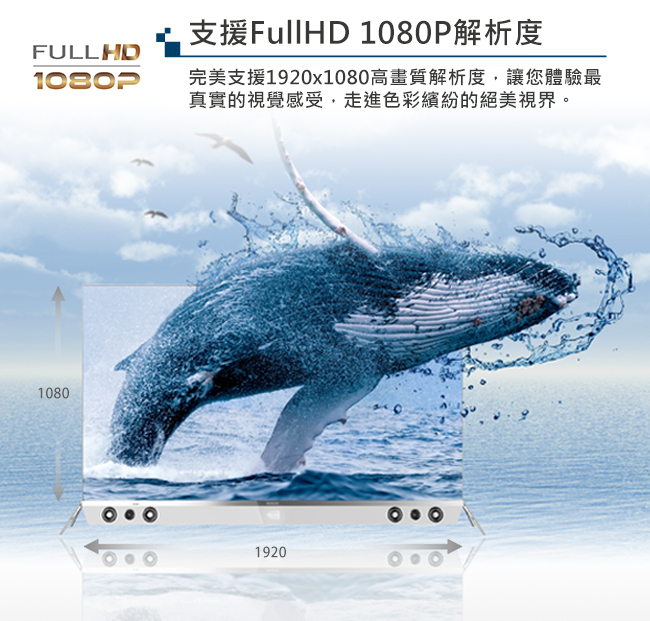 2017-1080P.jpg