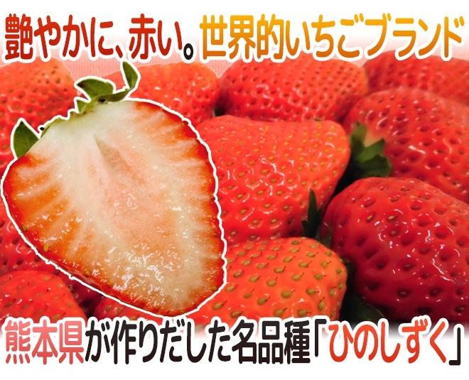 水果/草莓/點心/下午茶/日本/空運/進口/冬季草莓/腸胃/消化/部長/卡通/熊本熊/季節限定