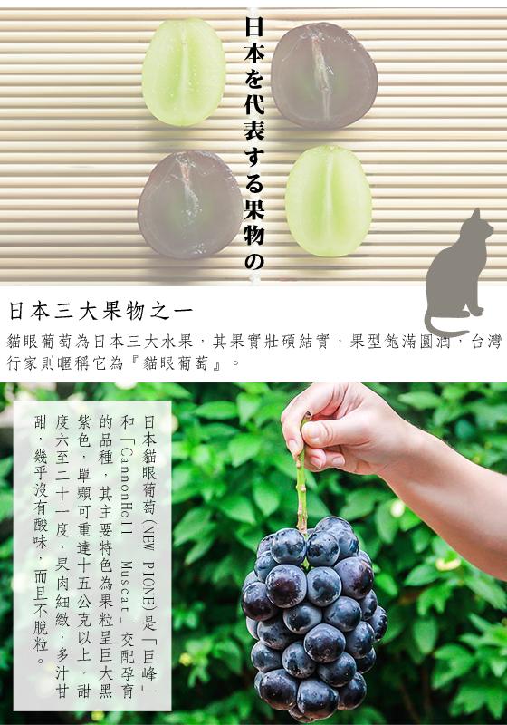 中秋/日本空運/岡山/無籽/貓眼葡萄/葡萄/禮盒/原裝禮盒/水果