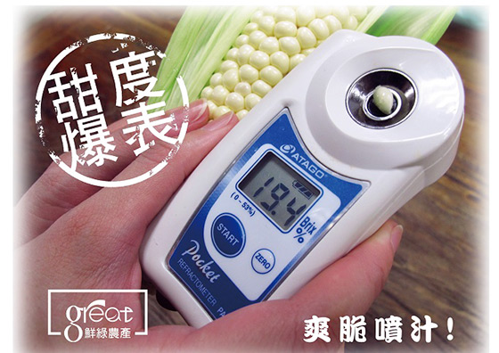 鮮綠農產/18度高甜度白美人水果玉米/水果玉米/甜玉米/玉米