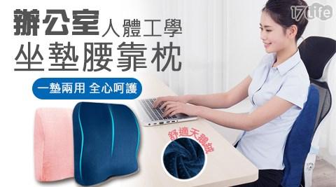 辦公室人體工學坐墊腰靠枕/坐墊/腰靠枕/辦公室/人體工學