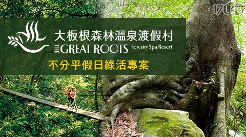 不分平假日可使用!來三峽大板根尋「根」之旅,徜徉在綠意盎然中,探索國寶級板根森林,感受芬多精洗禮!
