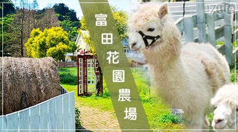富田花園農場-單人單次入園專案