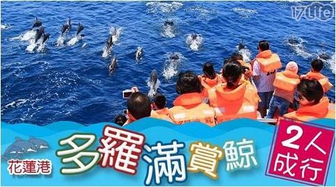 多羅滿賞鯨/多羅滿/賞鯨/旅遊/票劵/船/航海/親子/遊玩/雙人/情侶/家人