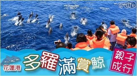 多羅滿賞鯨/多羅滿/賞鯨/旅遊/票劵/船/航海/親子/遊玩/家人