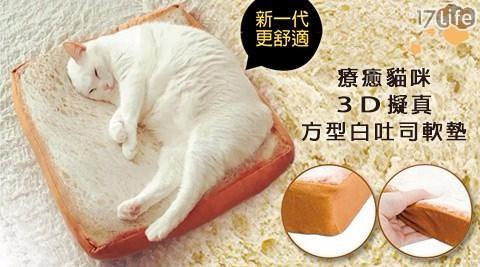 爆紅超療癒貓咪大號烤奶油吐司坐枕墊/吐司坐墊/坐墊
