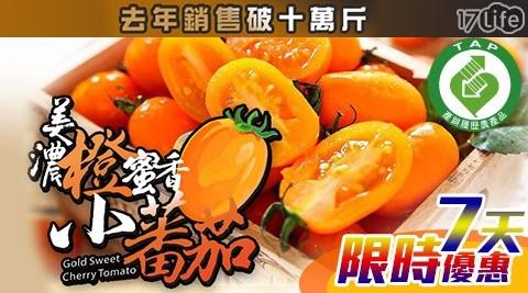 高雄/美濃/在地/台灣/水果/冬天/蕃茄/澄蜜香/小蕃茄/橙蜜香/特產/季節/限定/產銷履歷/認證/產季