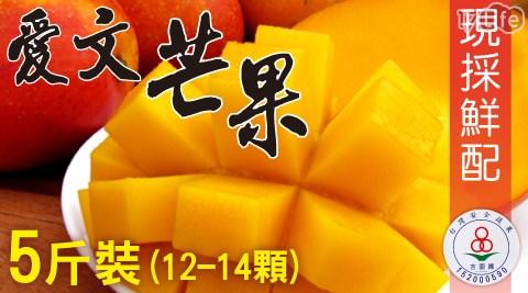 水果/吉園圃/家購網/芒果/愛文/枋山/屏東/冰品/果汁/現貨