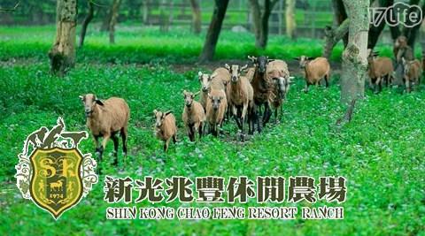 新光兆豐休閒農場/兆豐/農場/親子/大自然/花蓮/綠色/新光/電動車